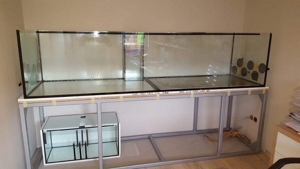 aquaristik magdeburg nishikigoi pond fachhandel f r. Black Bedroom Furniture Sets. Home Design Ideas