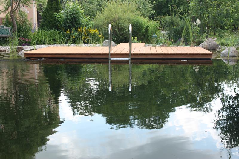 Schwimmteich in magdeburg bauen nishikigoi pond for Koi und goldfische in einem teich