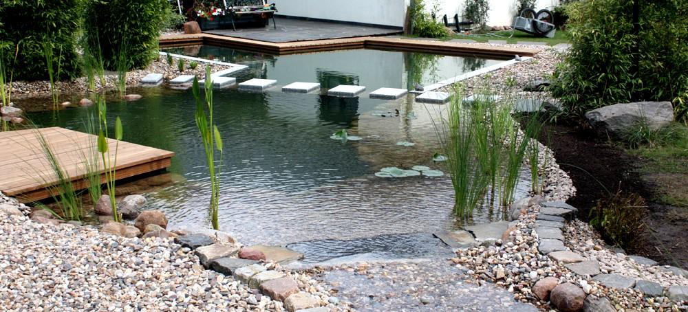 Teichbau magdeburg nishikigoi pond fachhandel f r for Koi und goldfische in einem teich